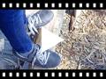 Video from Baskets pour Garçon en Daim