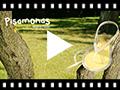 Video from Tongs blanches en caoutchouc avec fermeture à bride