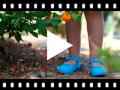 Video from Chaussures en Toile avec Fermeture à boucle